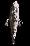 Mnémopodes (êtres de rivière)